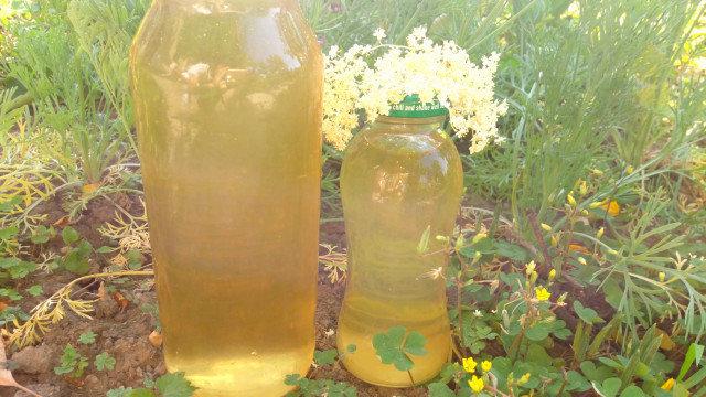 Домашен сок от цветовете на бъз